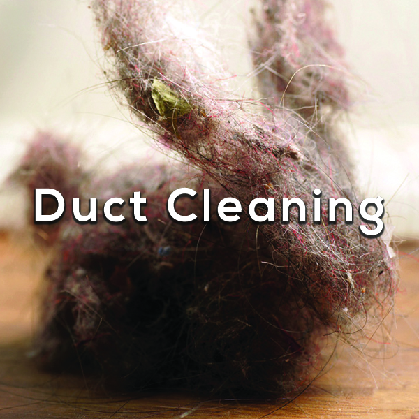 Dust bunny - Duct Cleaning
